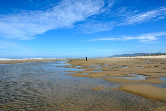 Oregon Dunes National Recreation Area : just us for miles