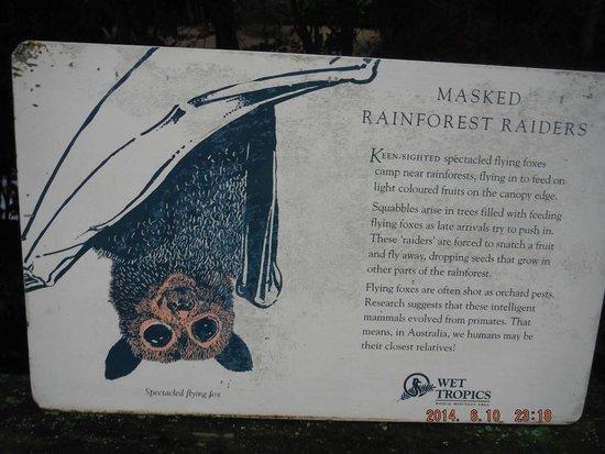 Wildlife Habitat Port Douglas: Bat sign