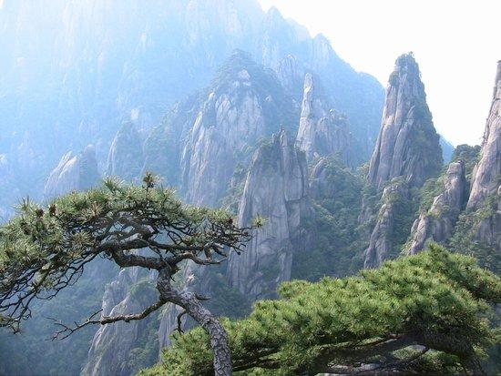 San Qing Shan : Sanqingsan Mountain