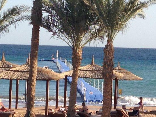 Coral Sea Sensatori - Sharm El Sheikh : Off diving at a nearby dive site