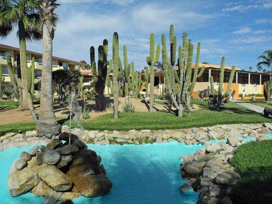 Posada Real Los Cabos: Garten mit Kakteen und künstlichem Wasserlauf