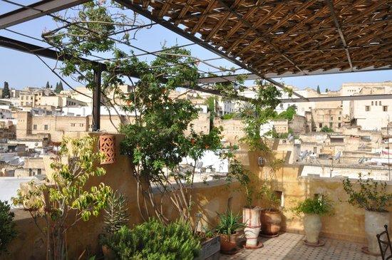 Riad Laayoun: Vue sur Fès depuis la terrasse sur le toit
