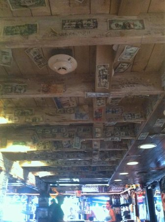 The Siesta Key Oyster Bar: Ceiling full of dollar bills