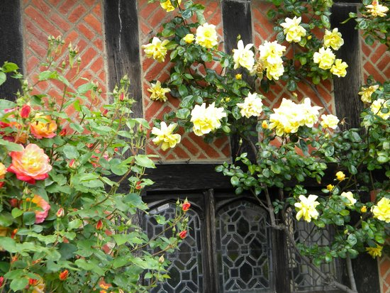 St. George's Chapel: fragrance and beauty