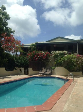 Surfsong Villa Resort : Pool House - 3 BR, 3 bath, 2 kitchens