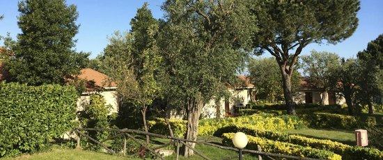 Bluegreen Village: The bungalow in so a nice garden
