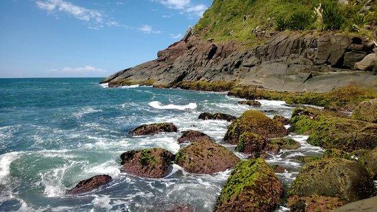 Silveira Beach: A vista parece um quadro!