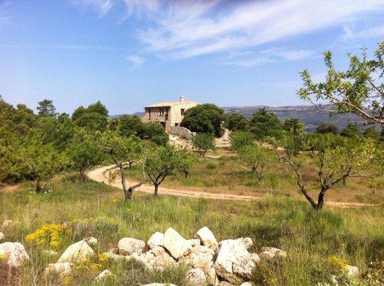 Casa rural Mas Del Salin: Mas del Salim