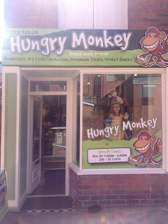 Hungry Monkey