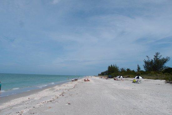 West Wind Inn : Beach