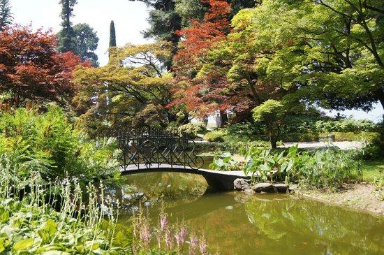 Giardini foto di i giardini di villa melzi bellagio tripadvisor - Giardini di villa melzi ...