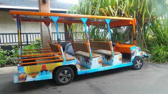 Plantation Bay Resort And Spa: Transportation mode