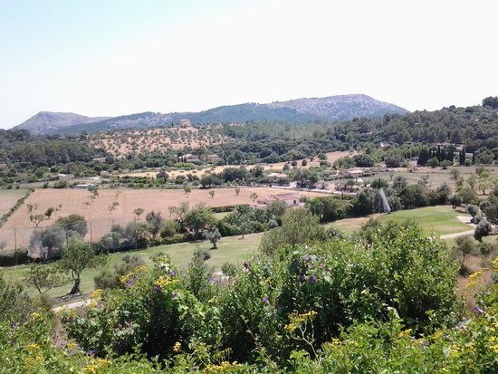 Golf Pollenca: Another view