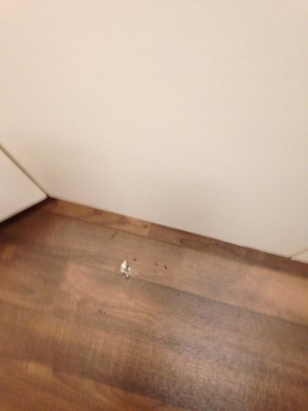 Extended Stay America - Los Angeles - Burbank Airport: Several dity pieces of paper product in multiple places in room