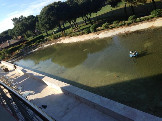 Pestana Vila Sol, Vilamoura: Water feature needs cleaning