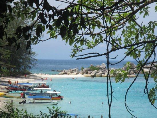 Perhentian Tuna Bay Island Resort: Uitzicht links van het terrein