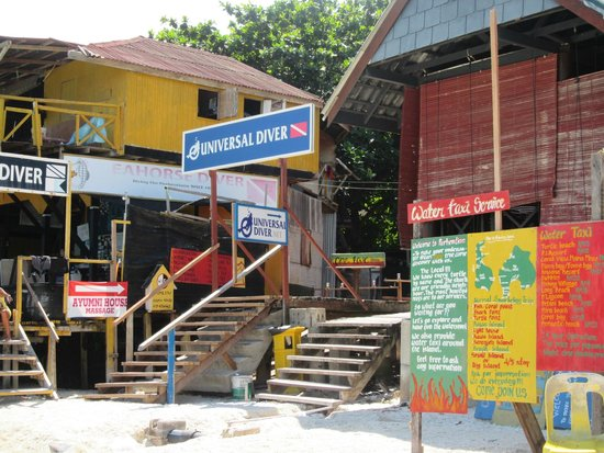 Perhentian Tuna Bay Island Resort: Duikmogelijkheid naast Tuna Bay
