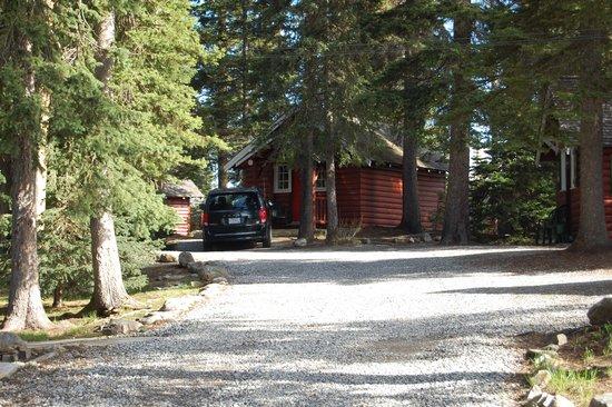 Paradise Lodge & Bungalows : Our cabin