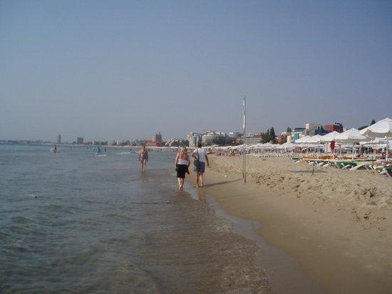 DIT Evrika Beach Club Hotel : beach