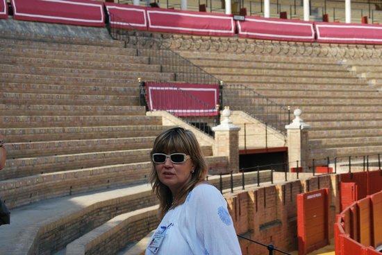 Descubrir Sevilla : all arena de toro