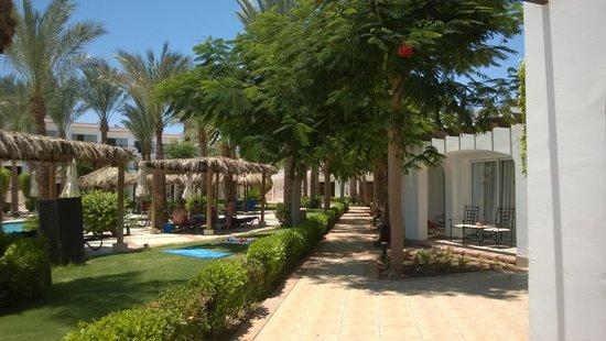 Jaz Fanara Resort & Residence : Vialetto interno