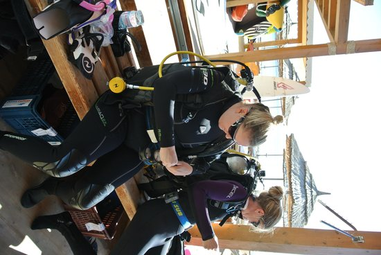 Ocean College Dive Centre : Getting ready for a dive