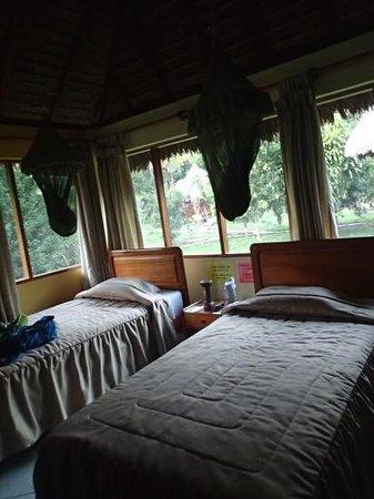 Tambopata Ecolodge: triple room - screened windows