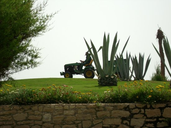 ClubHotel Riu Tikida Dunas: Grounds Gardener