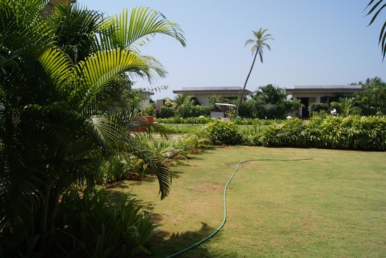 The Windflower Resort and Spa Pondicherry: View of the garden and lawn from the room