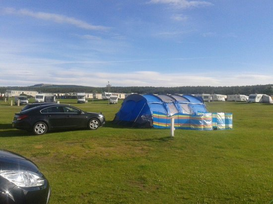 Elie Holiday Park: tent area.