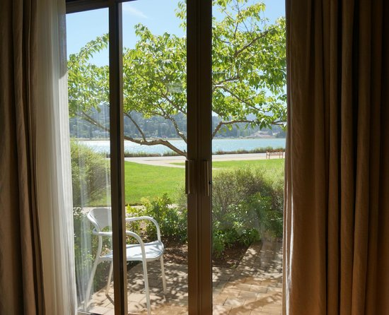 Acqua Hotel Mill Valley: Our view
