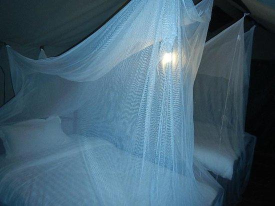 Kilima Valley Serengeti Tented Lodge: Tent 3 at night