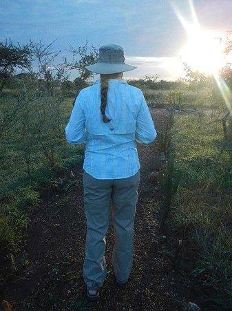 Kilima Valley Serengeti Tented Lodge: sunrise at Kilima Valley Tented Camp