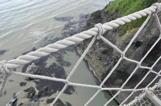 Carrick-A-Rede Rope Bridge: on bridge