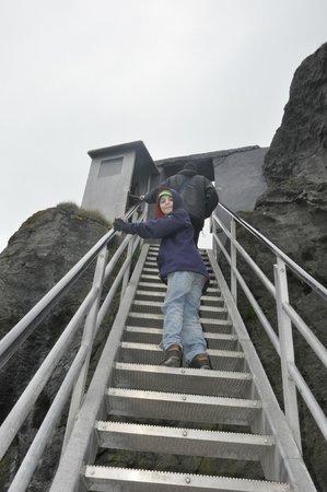 Carrick-A-Rede Rope Bridge: steps