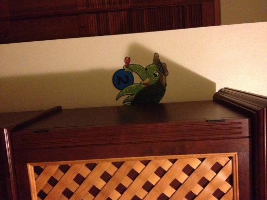 Turtle Bay Inn: This little turtle was hiding out behind the entertainment center! They're all around the hotel.