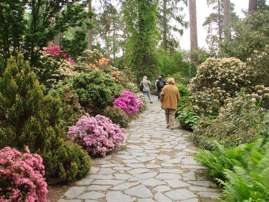 Arboretum Novy Dvur