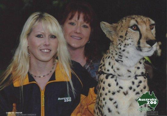 Australia Zoo : Cheetah