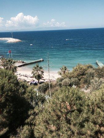 Pine Bay Holiday Resort: Playa