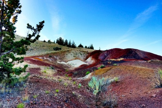 John Day Fossil Beds National Monument: The White Hill
