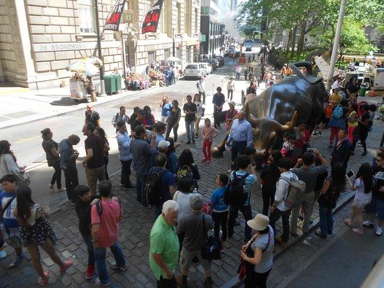 Charging Bull (Wall Street Bull): Popular place