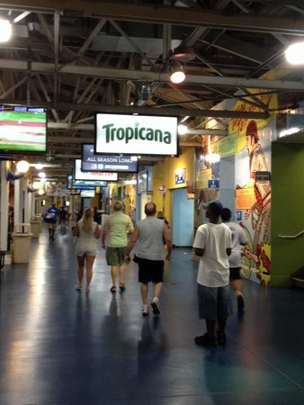 Tropicana Field : Hall