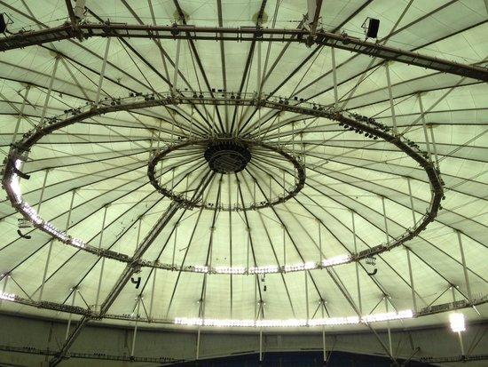 Tropicana Field: Dome