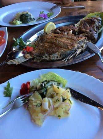 Misko The Oldest Fish Restaurant on Ada Bojana : st. Piere!!!