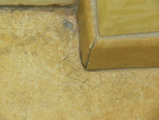 Country Inn & Suites By Carlson, Calhoun : hair on floor