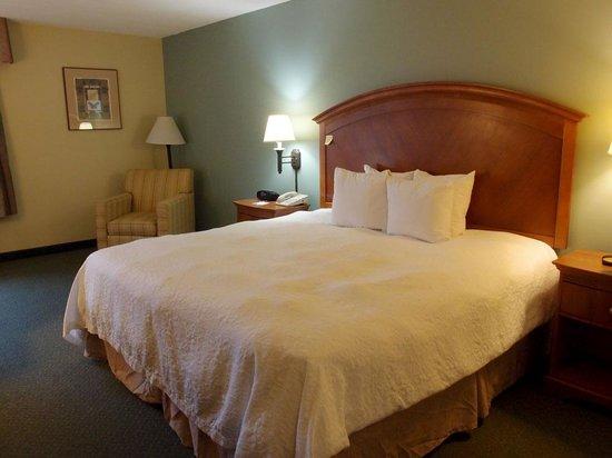 Hampton Inn San Antonio - Northwoods : King bed