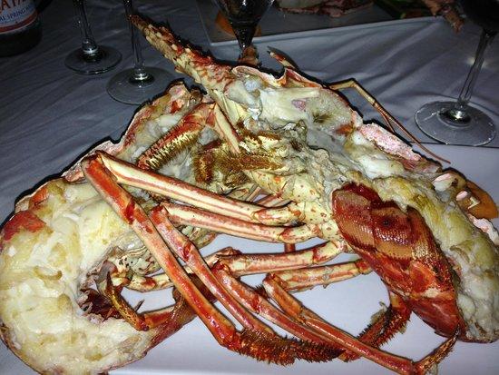 Ocean 82 : what a beautiful dish