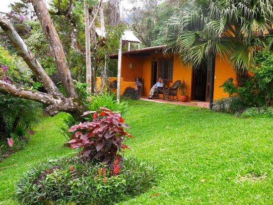 The Golden Frog Inn : Relaxing veranda