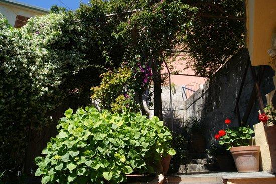 Alla Porta Rossa : Raggio di Luna - garden