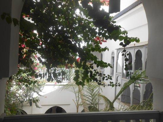Riad L'Orchidee : la cour interieure